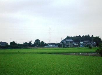 1008020006.JPG